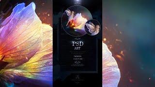 (1) VIP PSD Art