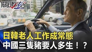 注定作到死?日韓老人工作成常態 中國「三隻豬」要人多生孩!? 關鍵時刻 20180813-6 馬西屏