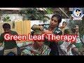 Green Leaf Therapy @ Nadipathy,Kakinada