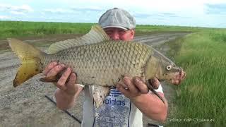 Жесть чуть не убило на рыбалке. Сазан клюет все крупнее и крупнее.