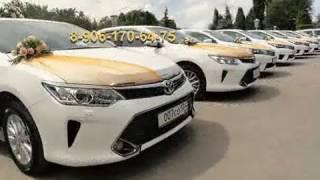 Свадебный кортеж Волгоград - машины, украшения для свадебных авто по лучшей цене в Волгограде