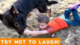 funny animals