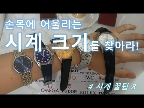 시계 크기별 비교 영상, 손목에 딱맞는 시계 크기부터 찾으세요! [시알못을 위한 시계 구입 가이드]