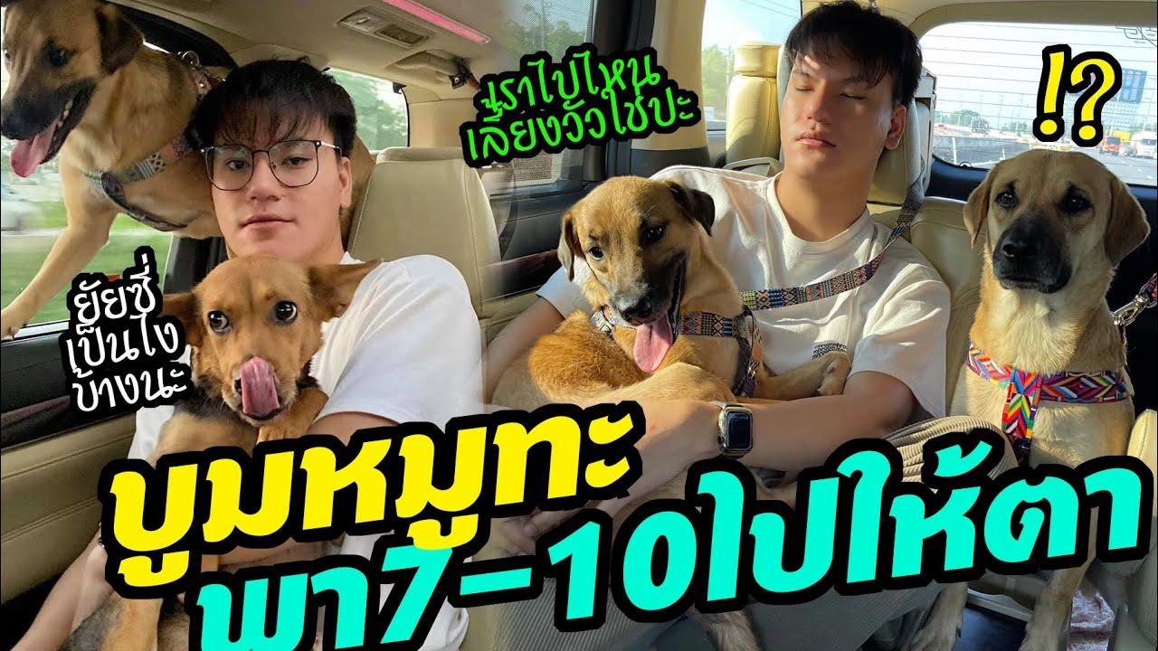 บูมหมูทะ ขับรถหรูมาส่ง 7-10 ไปหาตา ที่ ตจว. OMG! ครั้งแรกนั่งรถของหมาจร7