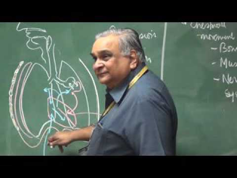 APPROACH TO RESPIRATORY SYSTEM