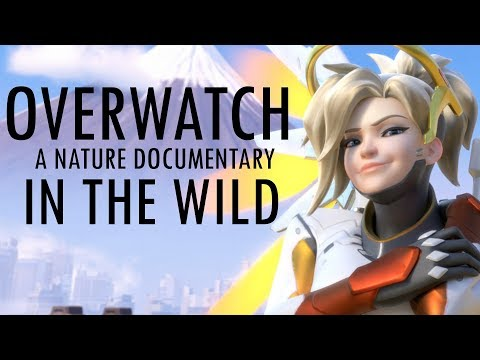 IF OVERWATCH WAS A NATURE DOCUMENTARY 3