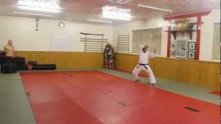 Kata PINAN SHODAN - Karate Jutsu
