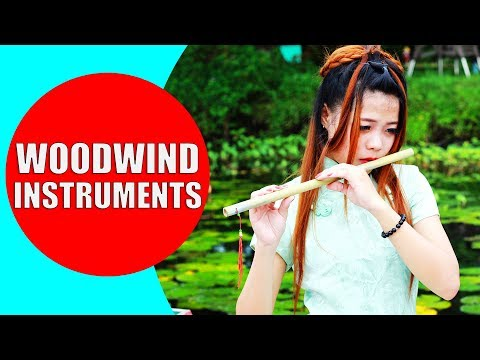 Woodwind Instruments for Children  Woodwind Instruments Sounds and Demonstration  Woodwind Family