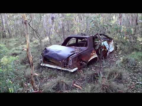 part-2-of-5-abandon-cars-&-bush-walking-nsw,-state-forest---australia