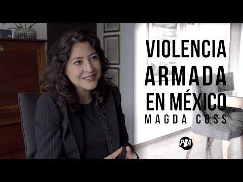 Violencia armada en México, entrevista con Magda Coss