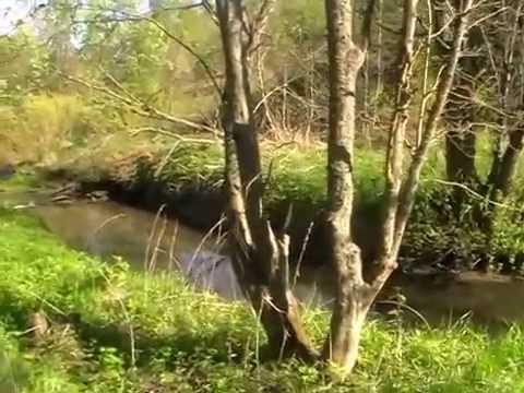 Красота русской природы весной. - YouTube