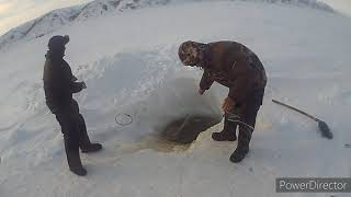 Рыбалка на сети ловля корешки на реке Енисей