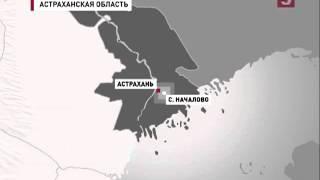 видео Красная книга Астраханской области
