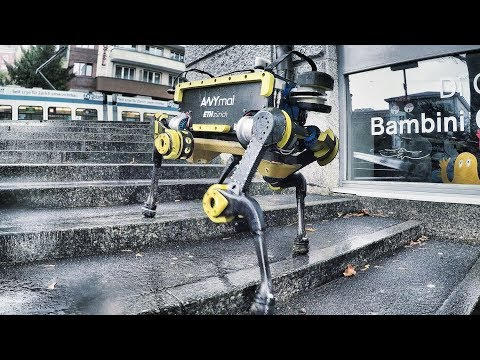 Legged Robot ANYmal Climbing Stairs in Zurich