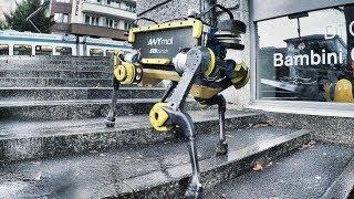 Legged Robot ANYmal Climbing Stairs in Zurich