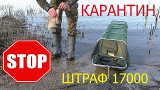 Рыбалка в Киеве запрещена на время КАРАНТИНА ШТРАФ 17 000