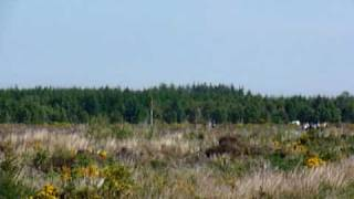 Aspect of Culloden Moor, Scotland