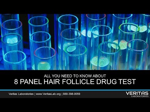 8-panel-hair-follicle-drug-test-all-you-need-to-know-about-faq