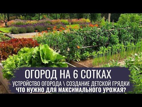 Огород на 6 сотках \\ Современный огород