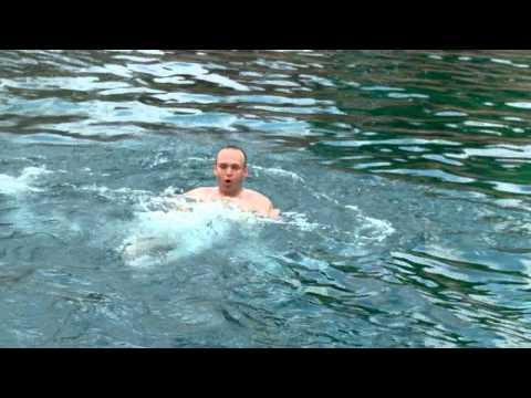 Barton Springs Pool, Austin, TX  The Daytripper