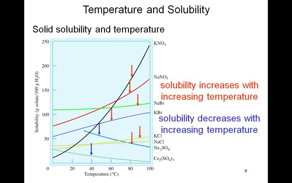 The Effect Of Temperature And Pressure On Solubility Mr C