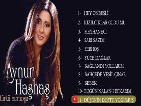Türkü Serhoşu Full Albüm - AYNUR HAŞHAŞ [Official Audio]