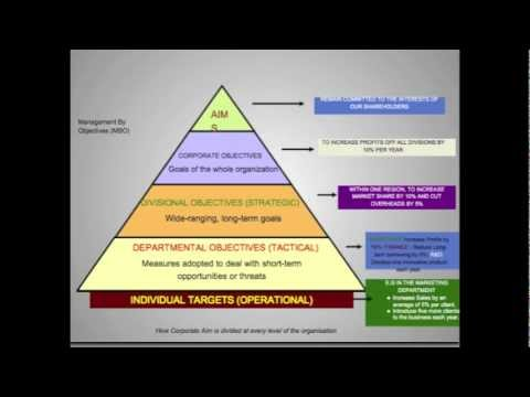 Organizational Objectives In Business Activity