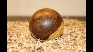 Teil 1 / Holzkugel aus Blauregen drechseln / Turning a wooden ball - diy