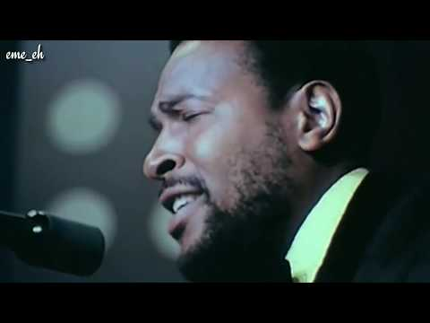 marvin gaye-what's going on (live 1972 chicago) [1971] (hd)
