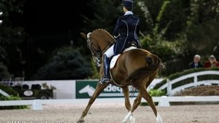 How to get your horse to stop leaning on the bit, Dressage training with Catherine Haddad Staller