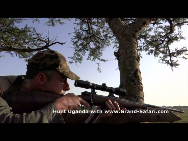Hunt UGANDA with Grand Safari (Trailer)
