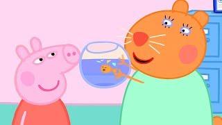 Свинка Пеппа на русском все серии подряд | Золотая рыбка | Мультики