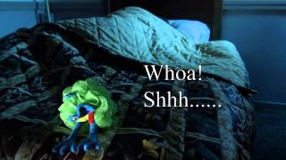 Frog's Video