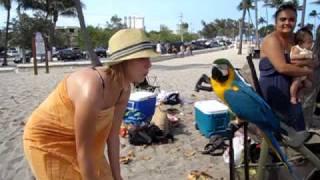 Whistling Sara with Hyper raving house loving bird.