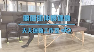 髖屈肌伸展運動|天天運動工作室Everyday Fitness Studio|高雄健身房