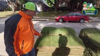 Zoysia Grass - How To Install Zoysia Grass in Dallas