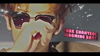 Download lagu PCY 🖤 // Blooming Days ~