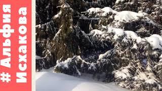 17 января 2021 г.Димитровград.Парк.Зима.Природа