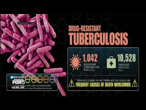 The Big Idea: Fighting Superbugs
