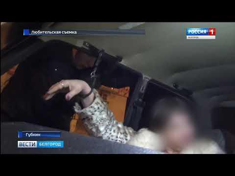 ГТРК Белгород - В Губкине автоледи устроила дебош