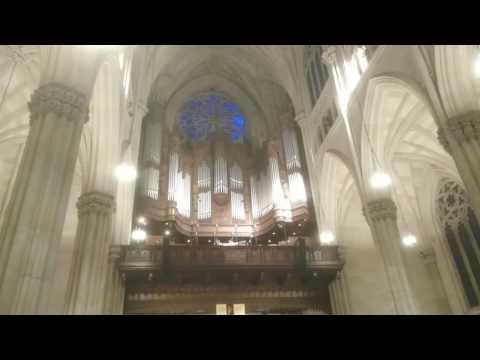 At St. Patrick's Cathedral NYC