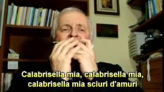 CALABRISELLA MIA - ARMONICA - LYRICS