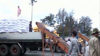 Tin tức 24h mới nhất hôm nay| TP. Hồ Chí Minh Xuất khẩu gạo giảm mạnh do thiếu thị trường