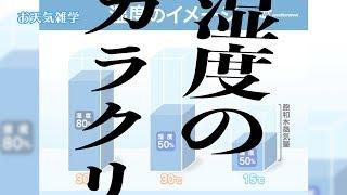 【お天気雑学】「湿度」のカラクリ