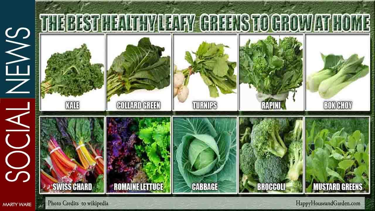 what are the best green leafy vegetables to eat