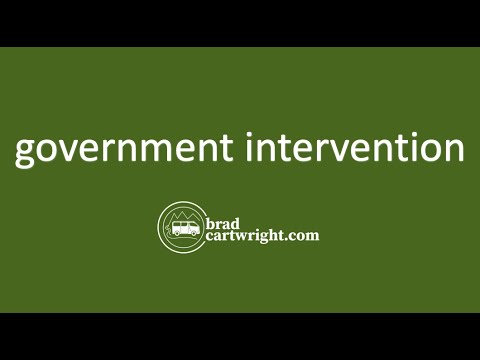 Government Intervention Series:  Introduction and Overview