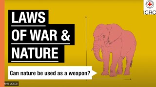 The laws of war and nature | The Laws Of War