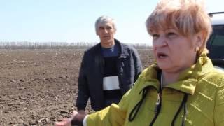 Егорлыкская свалка на поле фермера