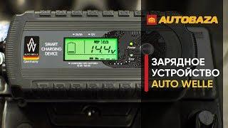 Интеллектуальное зарядное для аккумуляторов AUTO WELLE AW05-1208. Как зарядить аккум?