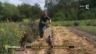 Cultiver autrement : la permaculture